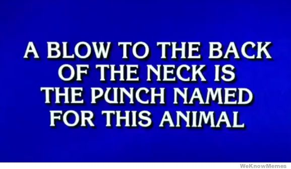 donkey-punch-on-jeopardy