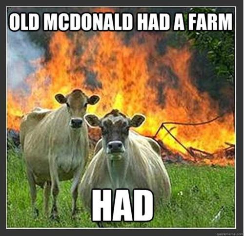 meme-cows-mcdonald